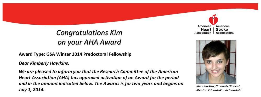 Hawkins AHA Award
