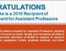 Sara Burke 2016 Excellence Award