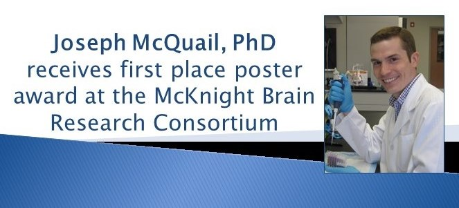 mcquail-mcknight-brain-research-consortium