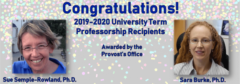 2019 Univ Term Professorships