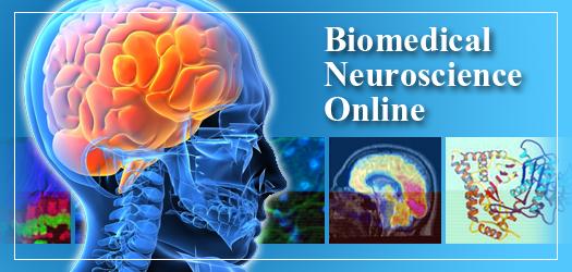 BiomedicalNeuroscienceImage (2)