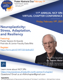 SFN Virtual Conference