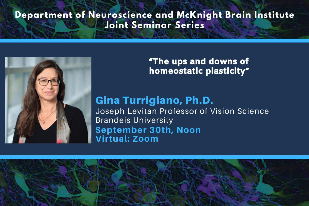 9.30 - Turrigiano - Neuroscience Departmental Seminar